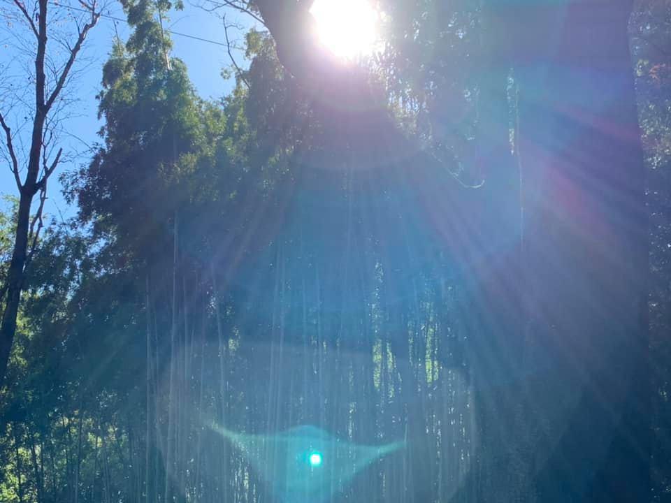 吉垣花園 オーガニックフラワー 夕やけ山 リトリート